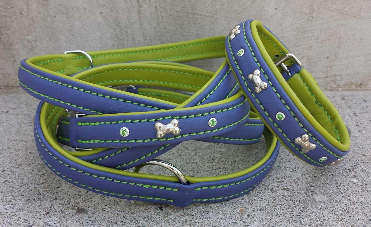 Hundehalsband und Hundeleine, violett-grün