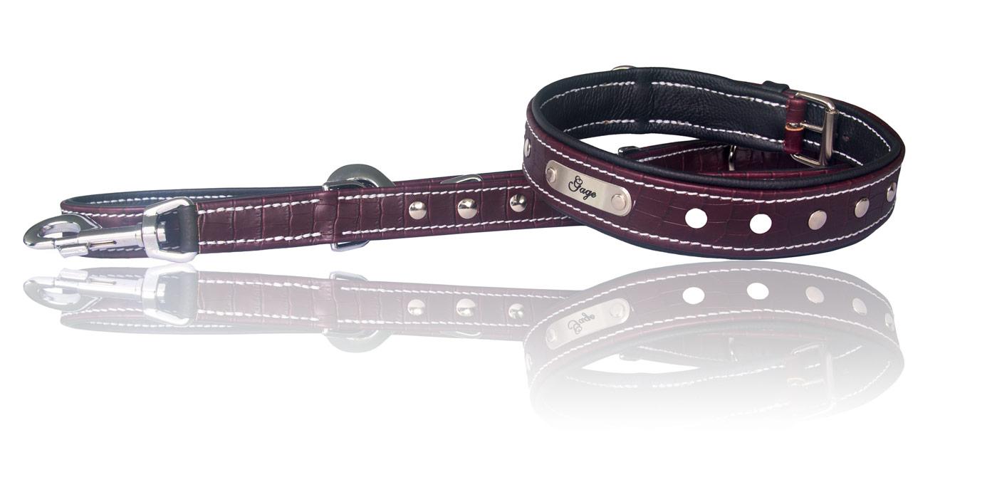 Hundehalsband und Hundeleine aus Leder mit Gravur